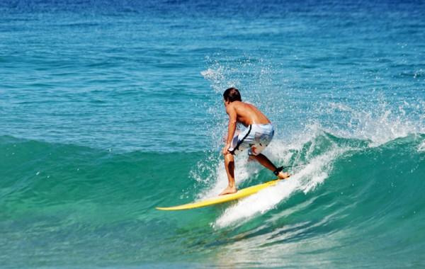 Bono Surf 20