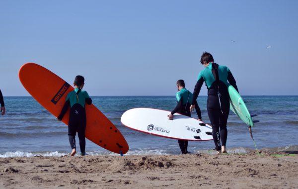 Abonament Surf 5